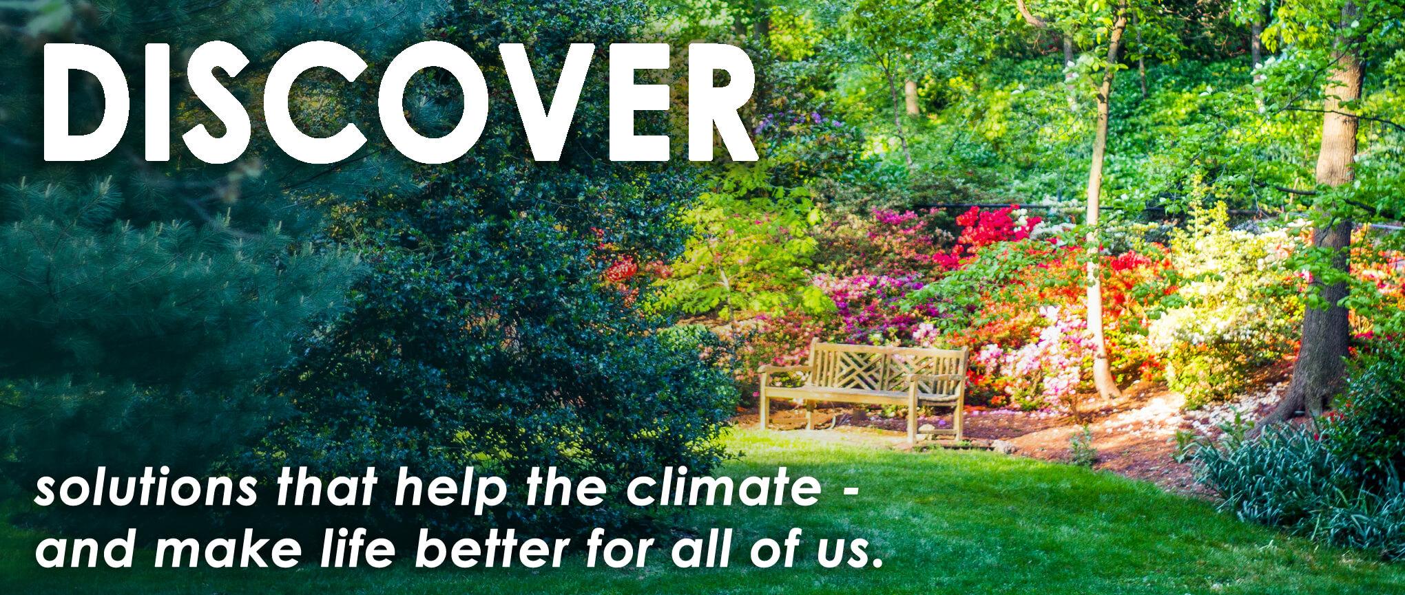 Discover Multisolving - solutions that help the climate and all of us